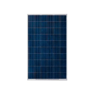 Panel TRINA SOLAR 325Wp Poly 24V